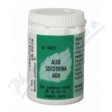 Aloe socotrina AKH por. tbl. 60